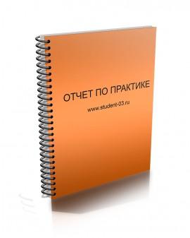 Купить Отчет по практике ОАО СтройСервисКом  Отчет по практике ОАО СтройСервисКом